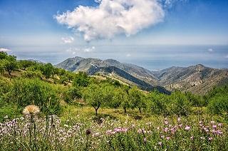 mountains-4366770_640