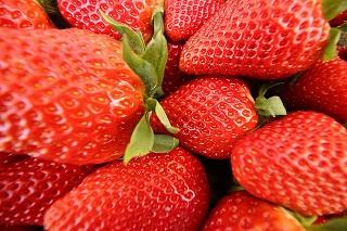 strawberry-1750888_640